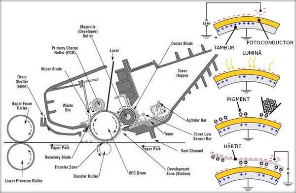 Cum funcţionează imprimanta laser?